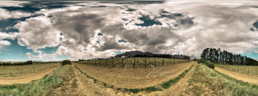 La Pastorale Wine Estate Stellenbosch